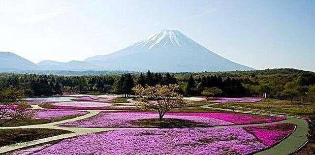 温泉 和歌山